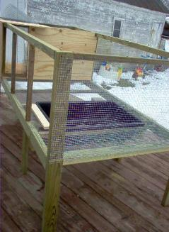 I was wondering what peoples duck pens/ houses looked like cause i have 4  and